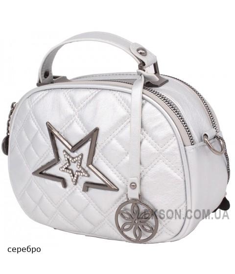 Женская модельная сумка Name кожзам 21х15х9 - Na107-111
