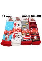 Носки зима- w608-402166