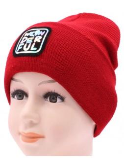 Детская вязаная шапка №057210-52-54